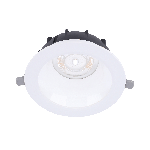 LEDDownlightRc-P-MW R200-23W-BLE-3000
