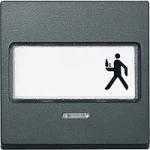 Капак за механизъм с поле за етикет и индикаторна лампа, Антрацит