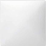 Сензорен капак, Полярно бял