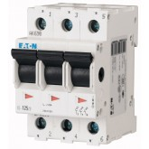 Main switch 125 A, 3P