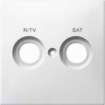 Central plate marked R/TV/SAT for antenna socket-outlet,, Aluminium