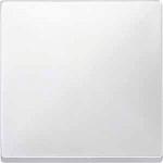 Cover plate for Rocker, Polar White