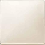 Cover plate for Rocker, White