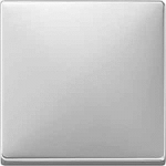 Cover plate for Rocker, Metallic