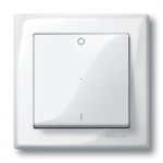 Cover plate for Rocker Single switch or button, Polar White