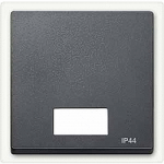 Cover plate for Double swich or button with lighting window, with opening for lense/symbol, Anthracite IP44