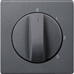 Central plate for three-step rotary switch, Anthracite