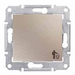 1-way Push-button 10 A - 250 V AC with trash bin symbol, Titanium