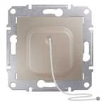 Cord Push-button 10 A - 250 V AC, Titanium