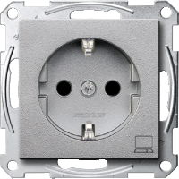 SCHUKO® socket-outlet marked Computer, Aluminium