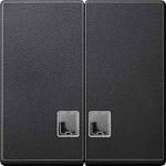 Капак за сериен ключ, с прозрачно правоъгълно индикаторно прозорче, Антрацит