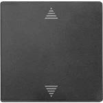 Безжичен бутон за управление на ролетни щори със сензорна връзка, Антрацит