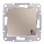 Бутон, със символ кошче за отпадъци 10 A – 250 V AC, Титаний