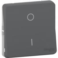 Mureva Styl - 2-pole switch - flush & surface mounting - grey